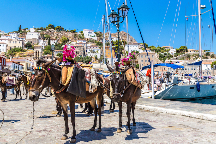Saronic Greece Hydra Day5